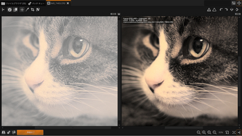 RawTherapee 4.0.6 - Tone Mapping and Lab